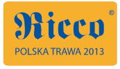 Ricco - współpraca i partner